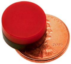 "1/2"" x 1/4"" Disc - Plastic Coated - Red/Black - Neodymium Magnet"