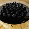 Ferrofluid: Overview and Experiment