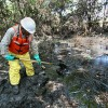 Magnet Experiment: How Magnets Could Clean Up Oil Spills