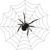 DIY Magnetic Spider Web Game