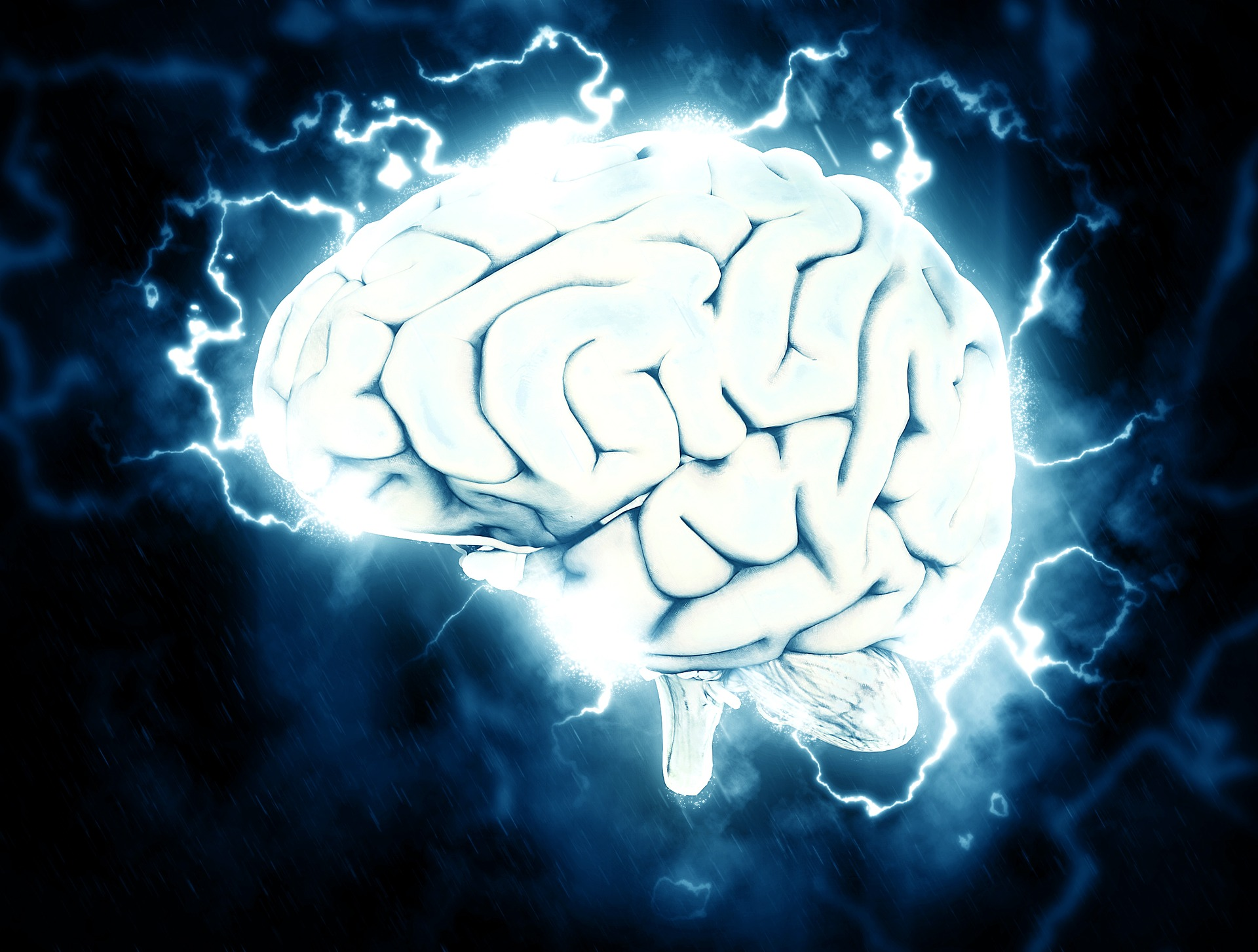 Human Brain and Its Magnetism