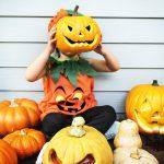 DIY: Autumn-Inspired Pumpkin Magnets