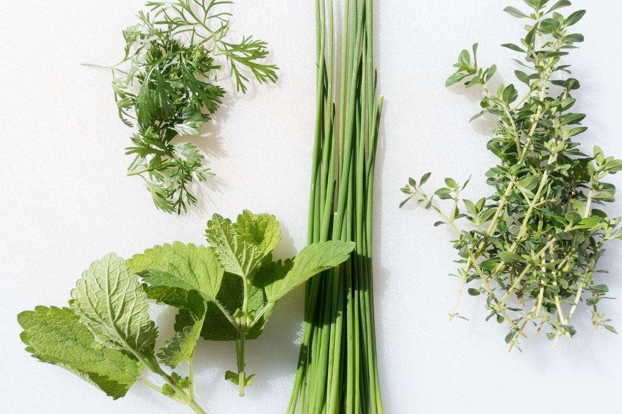 Magnetic herb garden