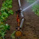 Magnetic Water Treatment in the Agriculture Industry
