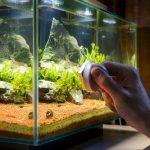 What Are Magnet Aquarium Cleaners?