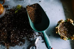 4 Ways to Use Magnets To Upgrade Your Gardening